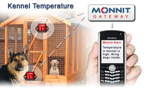 Monnit Wireless Sensor Solutions for Monitoring Kennel Temperatures